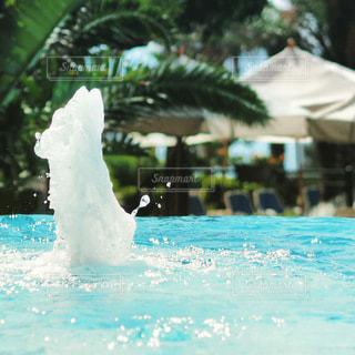 大きな水のプールの写真・画像素材[3555314]