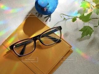眼鏡と本と青い鳥の写真・画像素材[3651717]