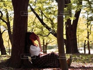 木の隣のベンチに座っている人の写真・画像素材[3740717]