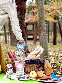 公園のテーブルに座っている人の写真・画像素材[3962754]