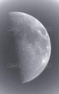 半月の写真・画像素材[4879815]