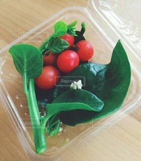 食べ物,トマト,野菜,食品,食材,フレッシュ,ベジタブル,ツルムラサキ