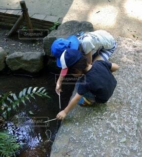 ザリガニ釣りの写真・画像素材[3423387]