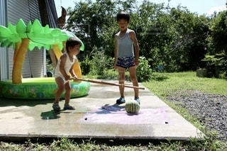 スイカ割りをする子供たちの写真・画像素材[3533242]