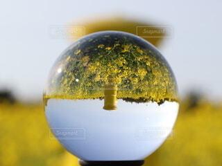 クリスタルボールの中に黄色いポストの写真・画像素材[4221294]