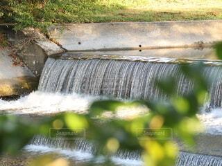 涼しげな川の写真・画像素材[4726047]