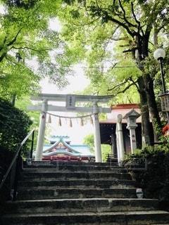 神社の写真・画像素材[3506617]