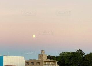 自然,風景,空,屋外,ピンク,綺麗,夕暮れ,幻想的,夕方,景色,日没,樹木,月,ブルー,満月,グラデーション,染まる,ビーナスベルト