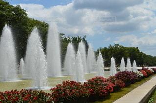 噴水のハーモニーの写真・画像素材[3514939]