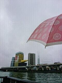雨の隅田川の写真・画像素材[3677705]