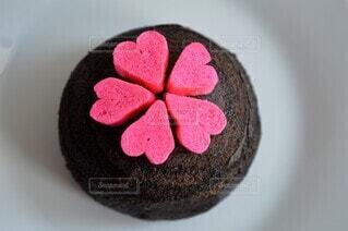 可愛いチョコケーキの写真・画像素材[4203778]