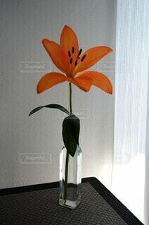 リビングのお花の写真・画像素材[4344890]