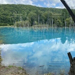 青の池の写真・画像素材[3982735]