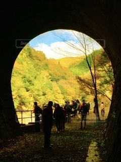 秋の武田尾廃線敷ハイキング、トンネルからの景色の写真・画像素材[3577267]