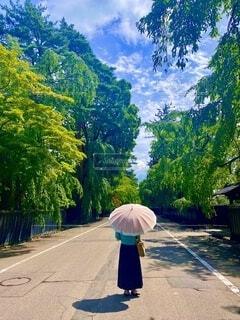 真夏の角館、ピンクの日傘をさす女性と新緑と青空の写真・画像素材[3678429]