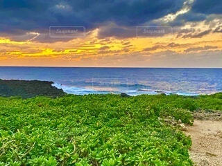 橙色の夕焼け空のグラデーション、砂浜一面の緑地越しの青い海の写真・画像素材[4106140]