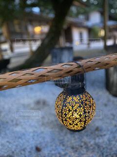 夕方の神社境内、木を背景に丸くて可愛い花柄の照明が1つの写真・画像素材[4588120]