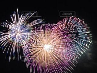美しい花火の写真・画像素材[3612539]