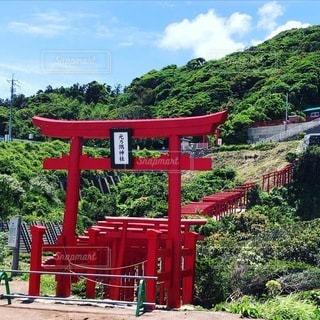 コロナで自粛中の元乃隅神社の写真・画像素材[3447937]