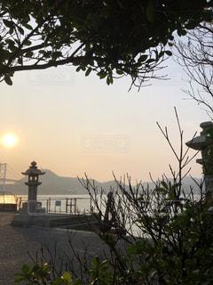 赤間神宮の朝の写真・画像素材[3615168]