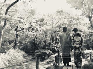 京都旅行をモノクロにて - No.1197712