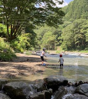 上野村の清流の写真・画像素材[4433669]