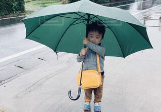 雨の日の朝の写真・画像素材[4486578]