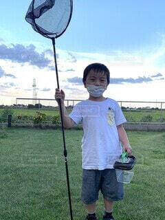 虫とりをする子どもの写真・画像素材[4650341]