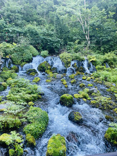 緑の植物に囲まれた滝の写真・画像素材[4931025]