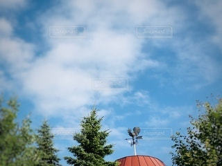 風見鶏の写真・画像素材[3494962]