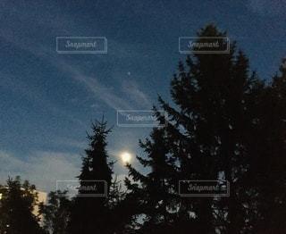 夏の南の空の写真・画像素材[3592084]
