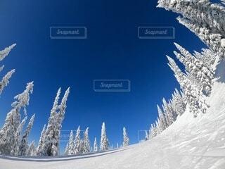 雪に覆われた斜面の下にスノーボードに乗っている男の写真・画像素材[4141806]