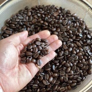 コーヒー,手,手持ち,豆,人物,コーヒータイム,ポートレート,コーヒー豆,焙煎,ライフスタイル,手元,コーヒーライフ