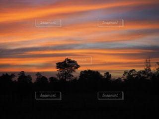 背景に夕日の写真・画像素材[3484561]