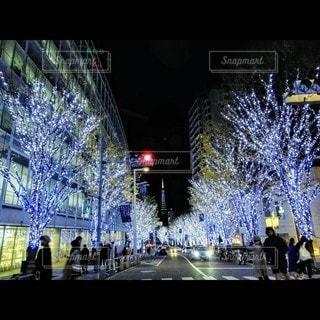 六本木ヒルズ(けやき坂)の写真・画像素材[3525129]