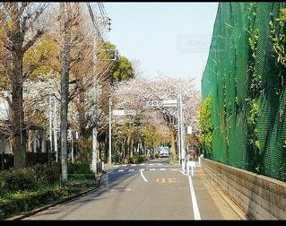 街の通りの眺めの写真・画像素材[3525146]