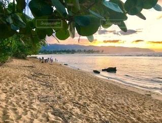 ハワイ、ノースショアの夕暮れの写真・画像素材[3487838]