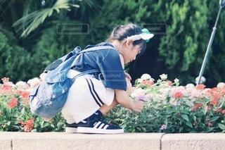 花壇の写真・画像素材[3580979]
