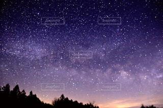 自然,空,夜,屋外,星,樹木,天文学