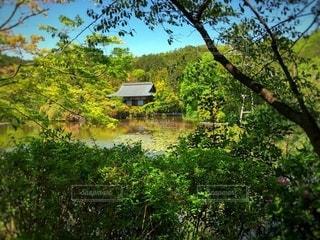 お寺と池の写真・画像素材[3521689]