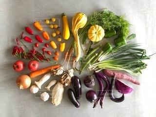 虹色野菜の写真・画像素材[3719527]