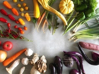 カラフルな野菜たちの写真・画像素材[3719532]