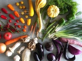 カラフル野菜の円の写真・画像素材[3719588]