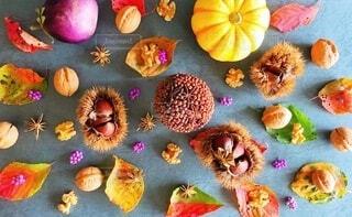 ラブリーな秋の写真・画像素材[3752717]