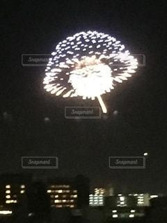 おもしろ花火の写真・画像素材[3565890]