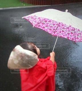 初めての傘の写真・画像素材[3694683]