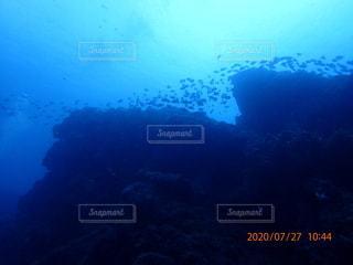 水中写真の写真・画像素材[3499118]
