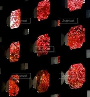 赤と黒の写真・画像素材[3524887]