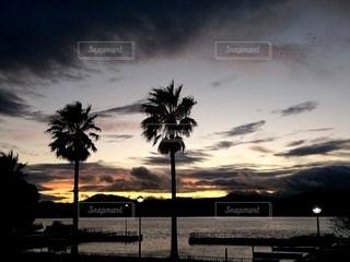 夏の夕焼けの写真・画像素材[3525239]