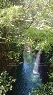 木々に囲まれた滝の写真・画像素材[3516733]